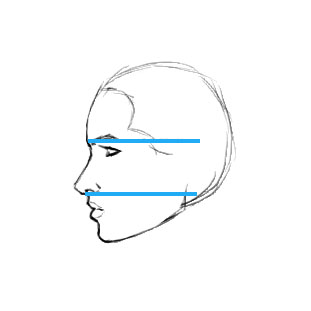 how to draw a side profile of a face